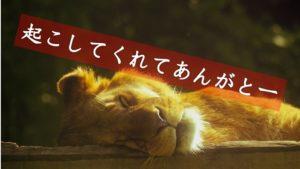 起こしてくれてありがとう_ライオン